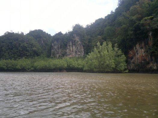 Mangroven Wälder
