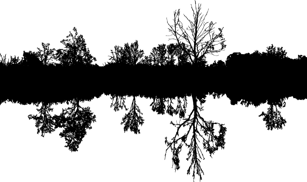 Baum-2