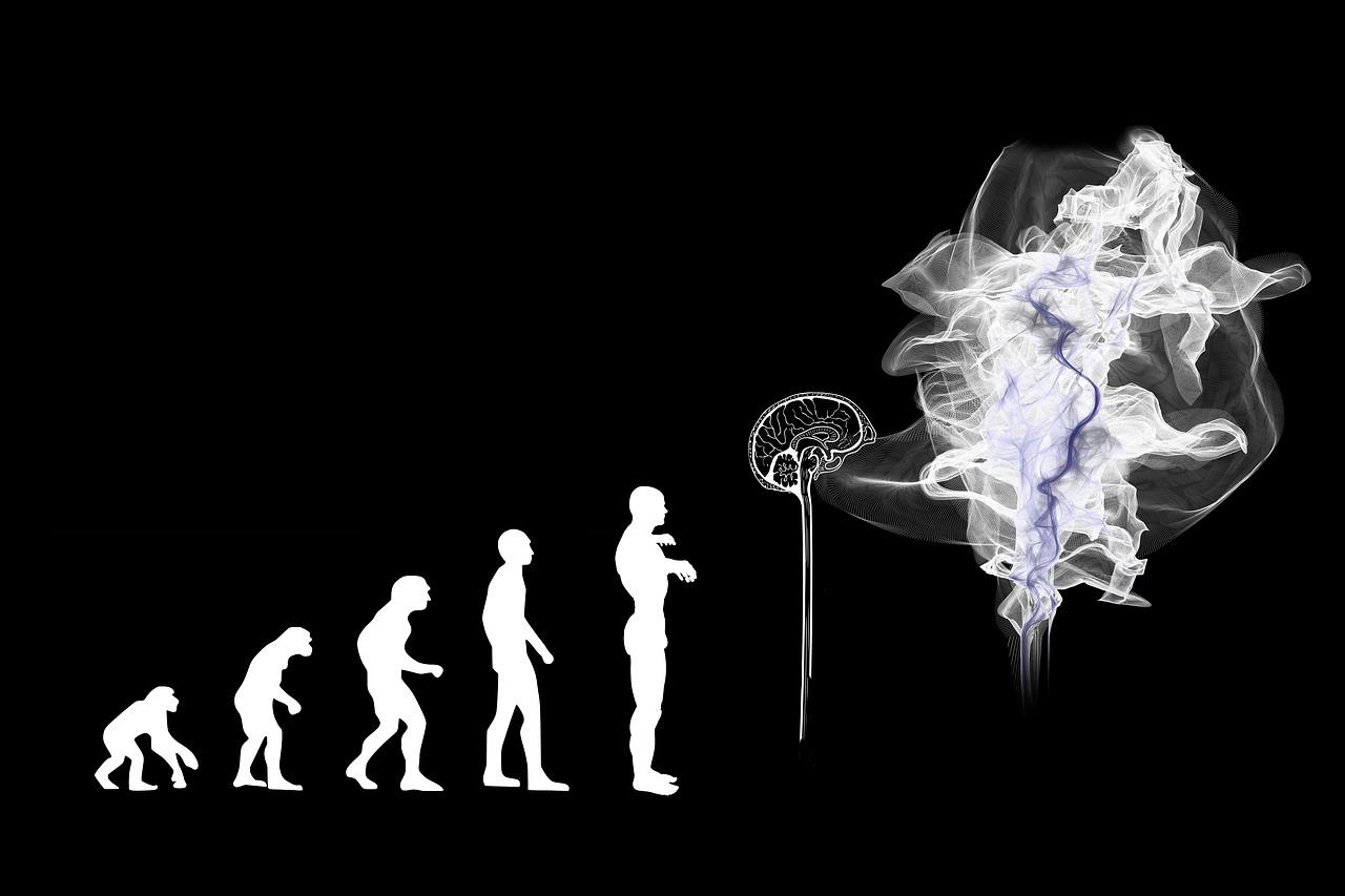Menscheitsentwicklung